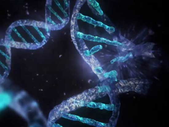 DNA破壊image