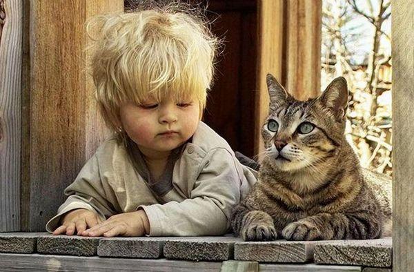ネコさんと子供のimage