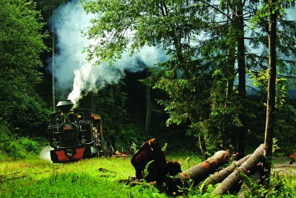 森と機関車image