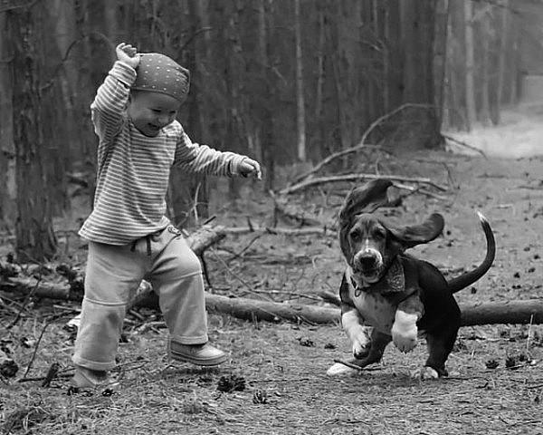 自然と生き物(ワンコさんと遊ぶ)image