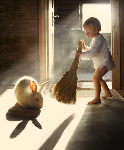 ほのぼの(ウサギの傍で掃除)image