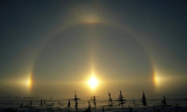 ほのぼの(太陽の奇跡)image