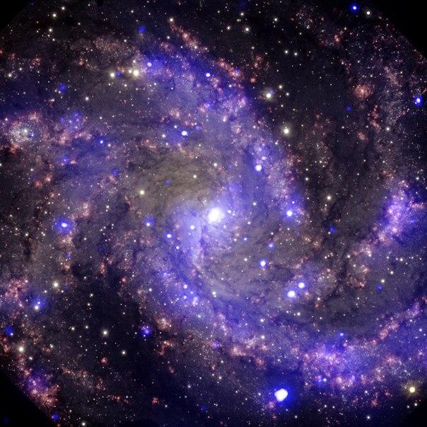 天空の(NGC6946)image