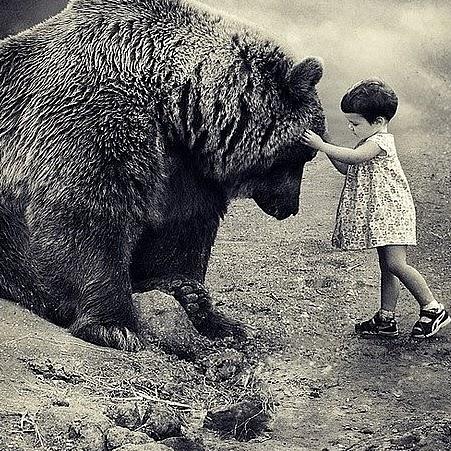 動物さん(クマと幼子)image