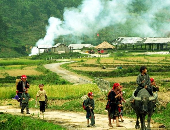 地球の情景(ベトナムの牧歌抒情)image