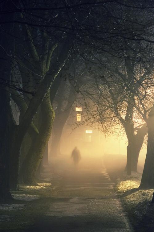 自然(霧)image