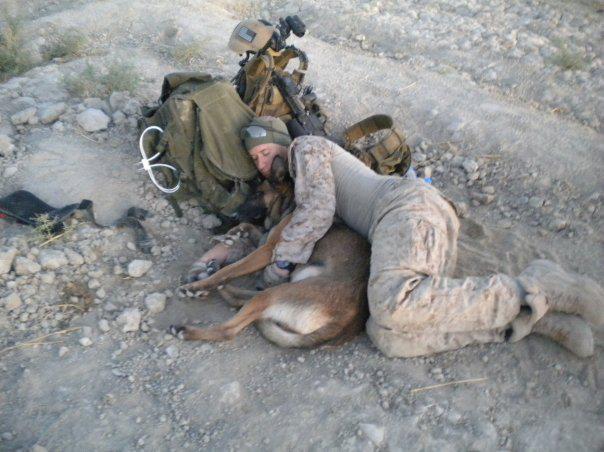 風景(兵士と犬の添い寝)image
