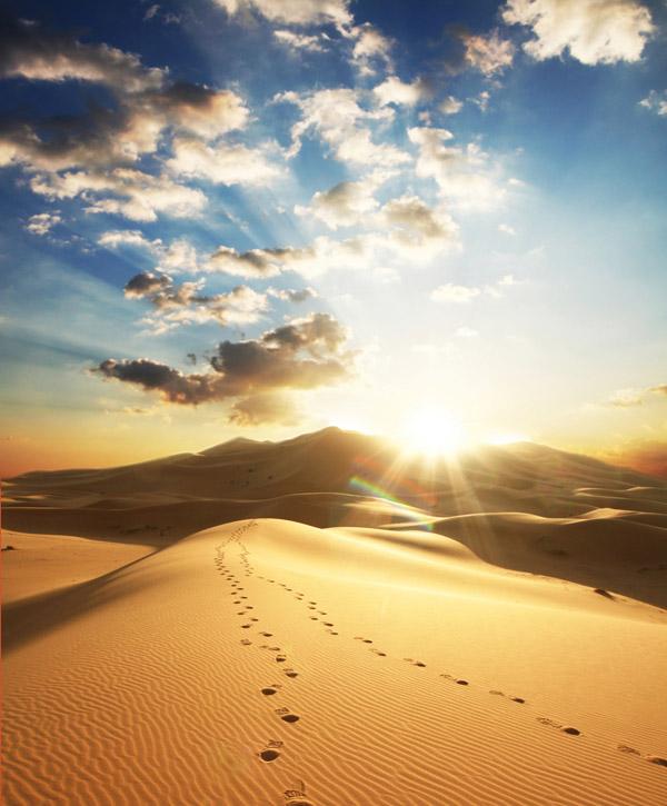 ラザロの(修飾用・砂漠の足跡)image