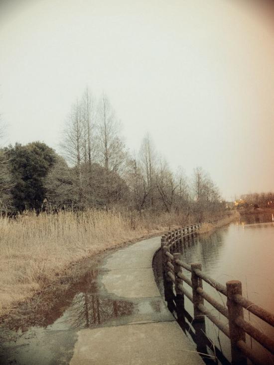 IMGP0625_edited-1.jpg