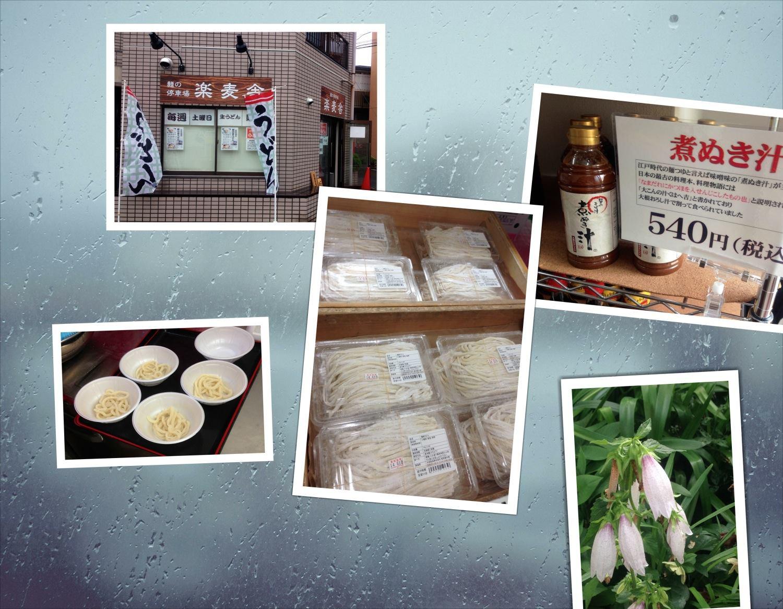 雨告知udon0618
