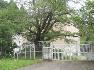 金川発電所