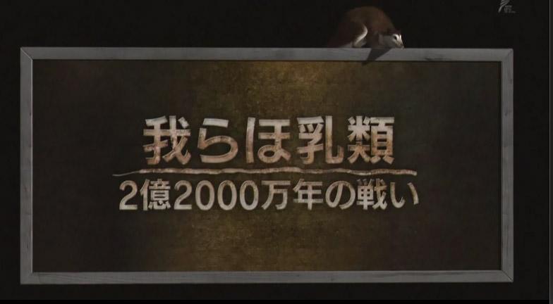 14052701.jpg