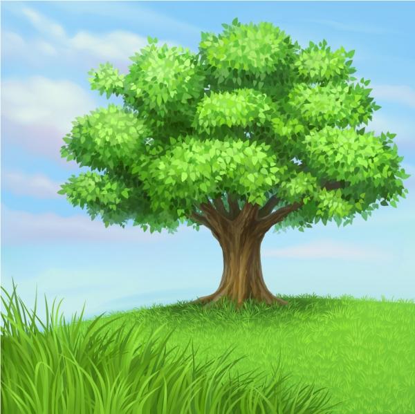 草原の緑の樹 trees blue sky