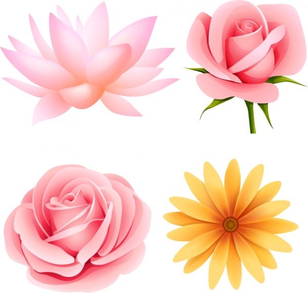 可憐な花びらのクリップアート beautiful small flowers vector