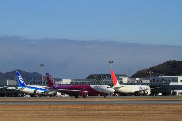 MM A320-214 JA801P RJOM 140212 05