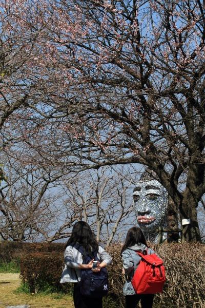 松山市総合公園 見驚 140317 05