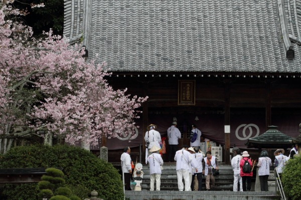 繁多寺&桜・雨 140329 07