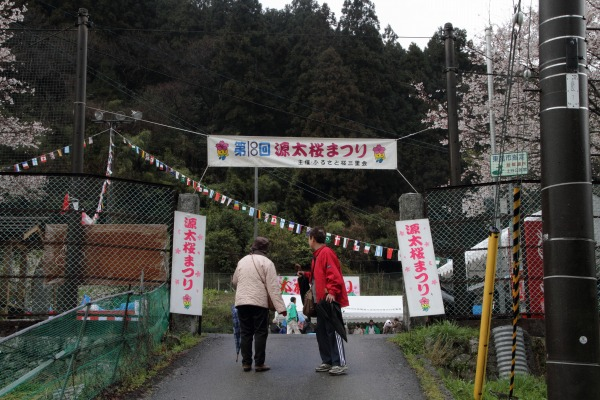 源太桜祭り 140406 01