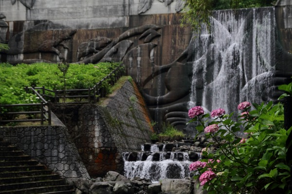 白猪の滝農村公園紫陽花 140621 05