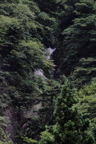 白猪の滝・台風11号 140810 03