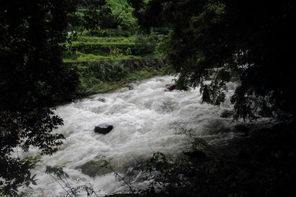 雨滝 140810 07