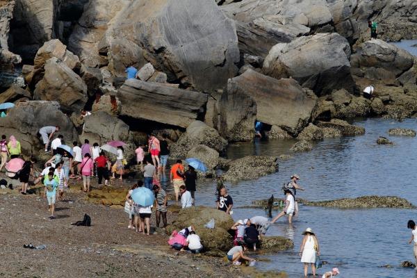 海浜国家地質公園 140829 06