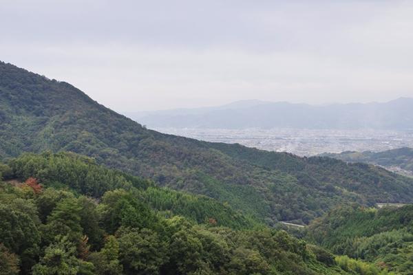 浄瑠璃寺への道