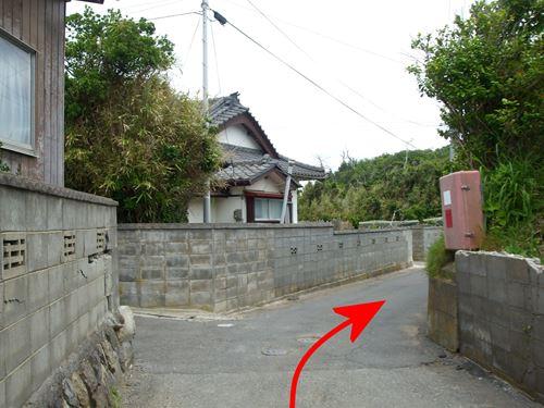 dohamiki6.jpg