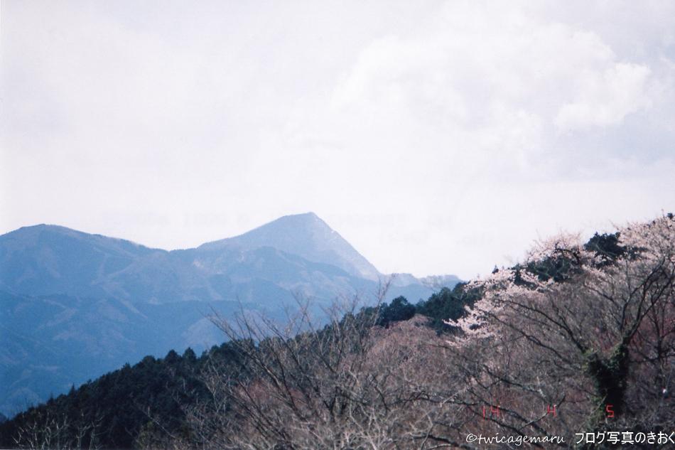 武甲山の見える景色と桜