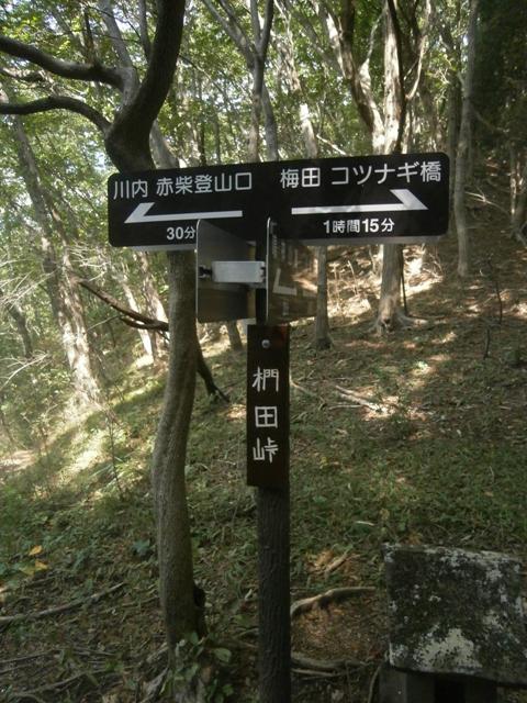 鳴神山通信