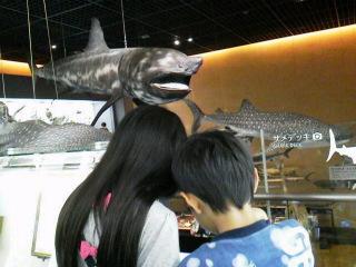 1博物館2