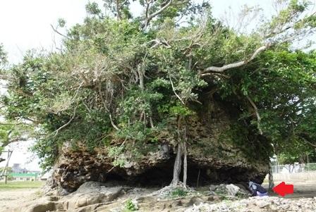 DSCF5742 - 津波岩