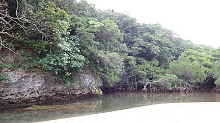 DSC07008 - 川