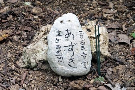 あずき墓石