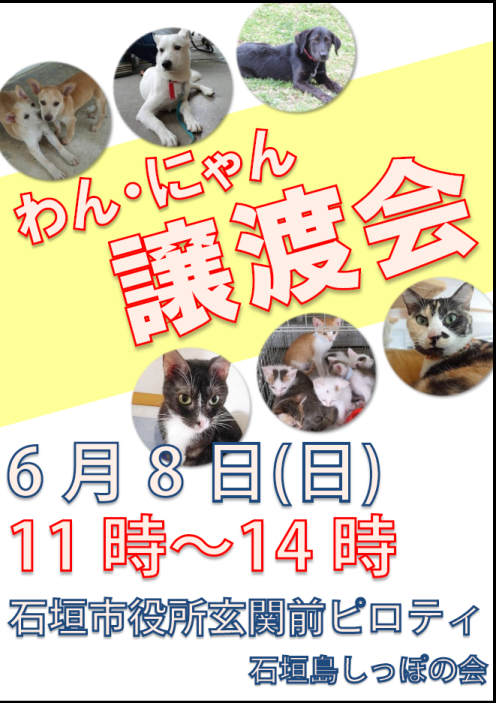20140608_jyotokai.png