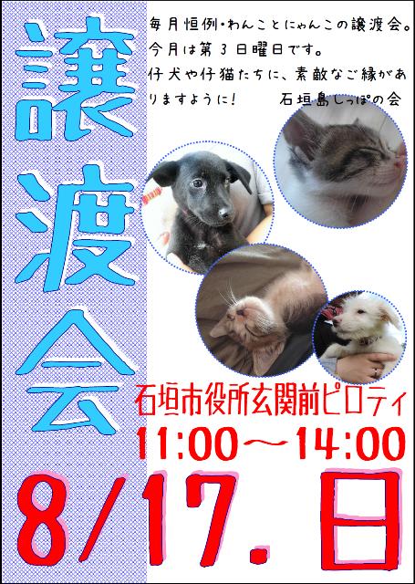20140817_jyotokai - コピー