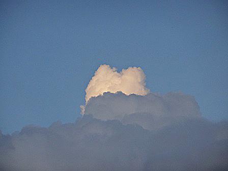 DSC01191 - 猫雲?
