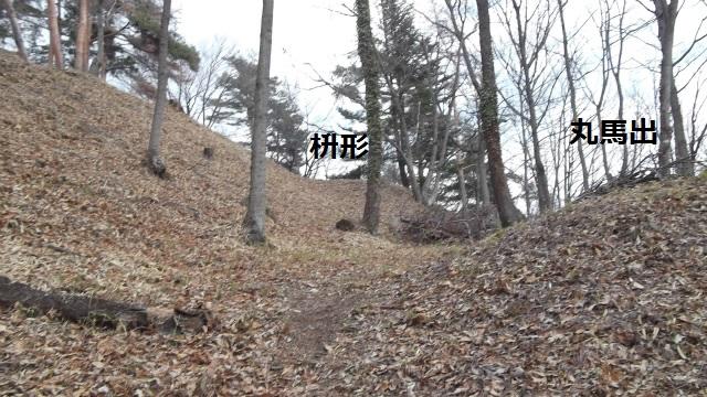 DSCF2875.jpg