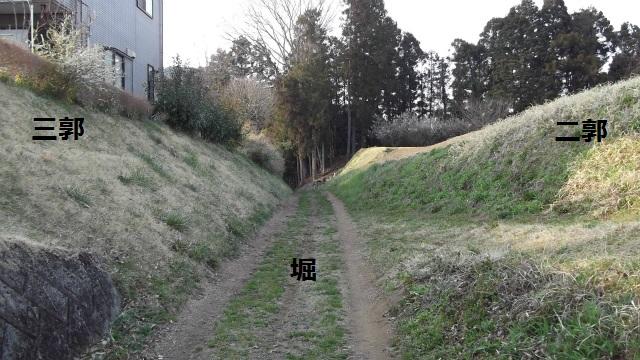 DSCF3111.jpg