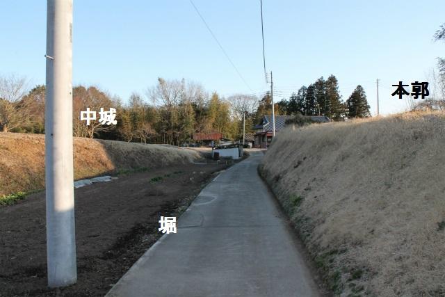 IMG_4199.jpg