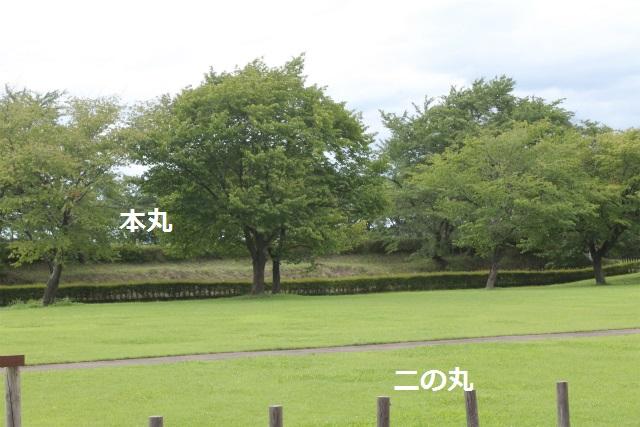 sIMG_7290.jpg