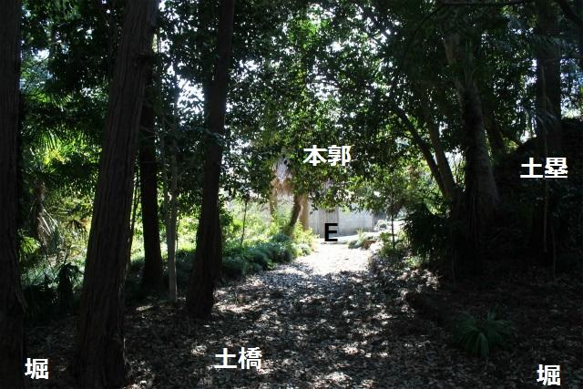 ssIMG_3978.jpg