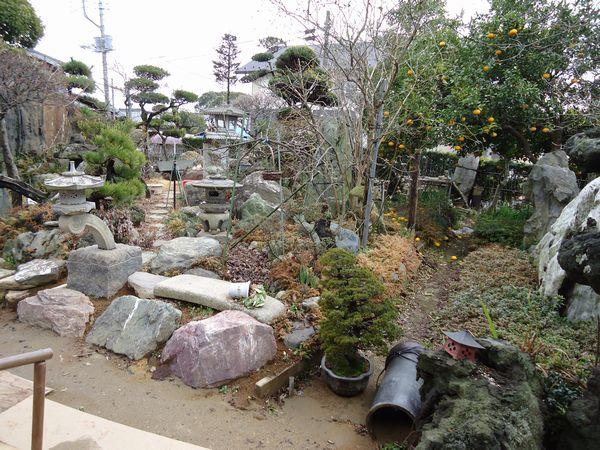 施工前の庭