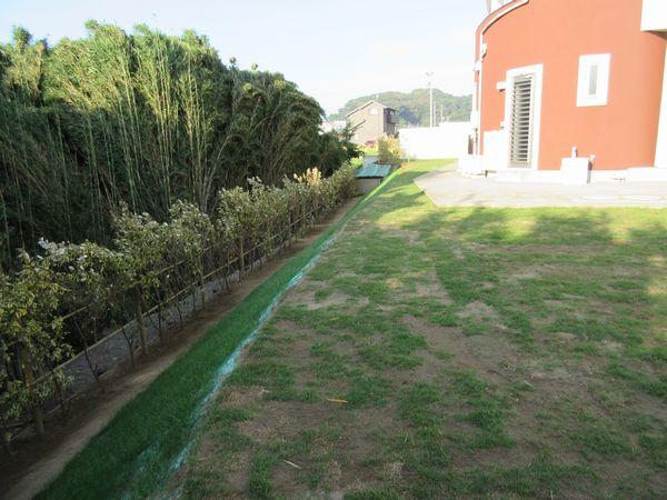 川側完了ロール芝と植栽