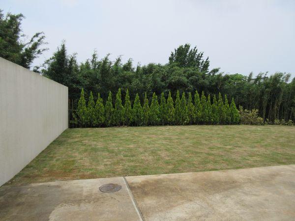 メインの庭完了1