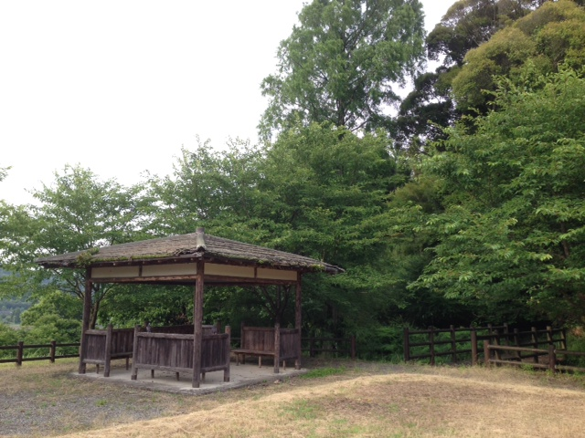 hato-0705-01.jpg
