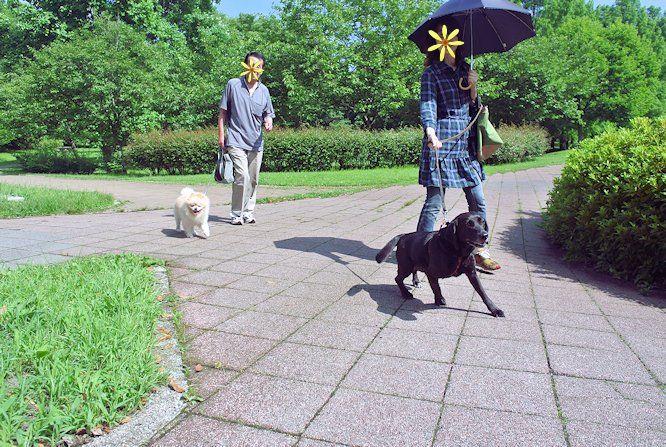2014長岡公園594