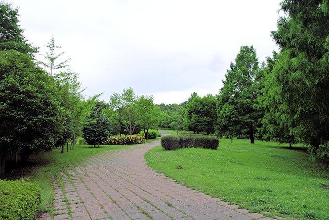 2014長岡公園636