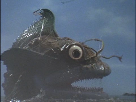 巨大怪魚 アンゴーラス(親)
