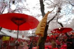 平野神社2014 012